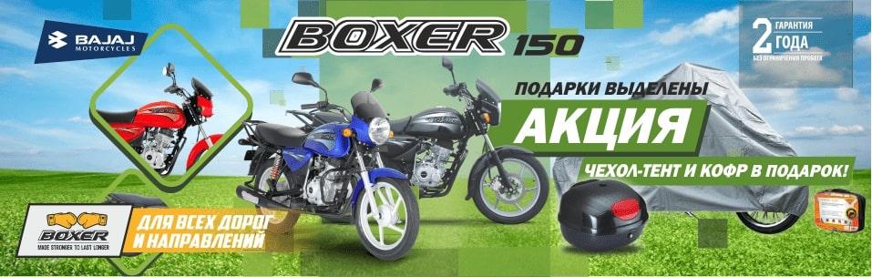 Boxer_150